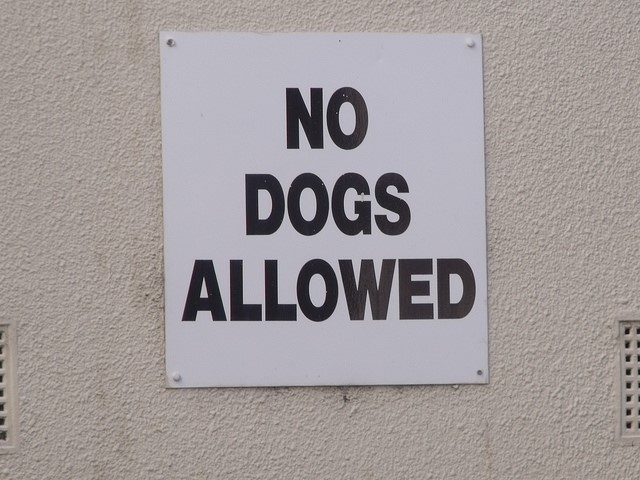 No dogs allowed.jpg